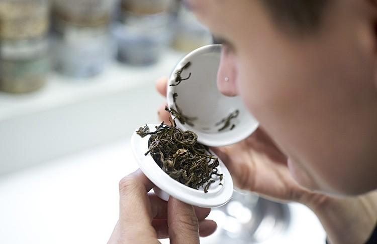 La via del te
